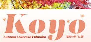 'SONY DSC' from the web at 'http://fukuoka-now.com/wp-content/uploads/2013/09/koyo-banner.jpg'